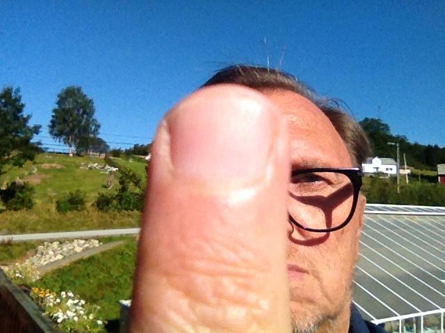 Fingern Jarle