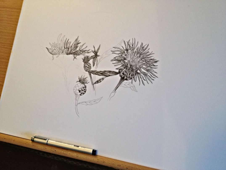 Blomstertegning