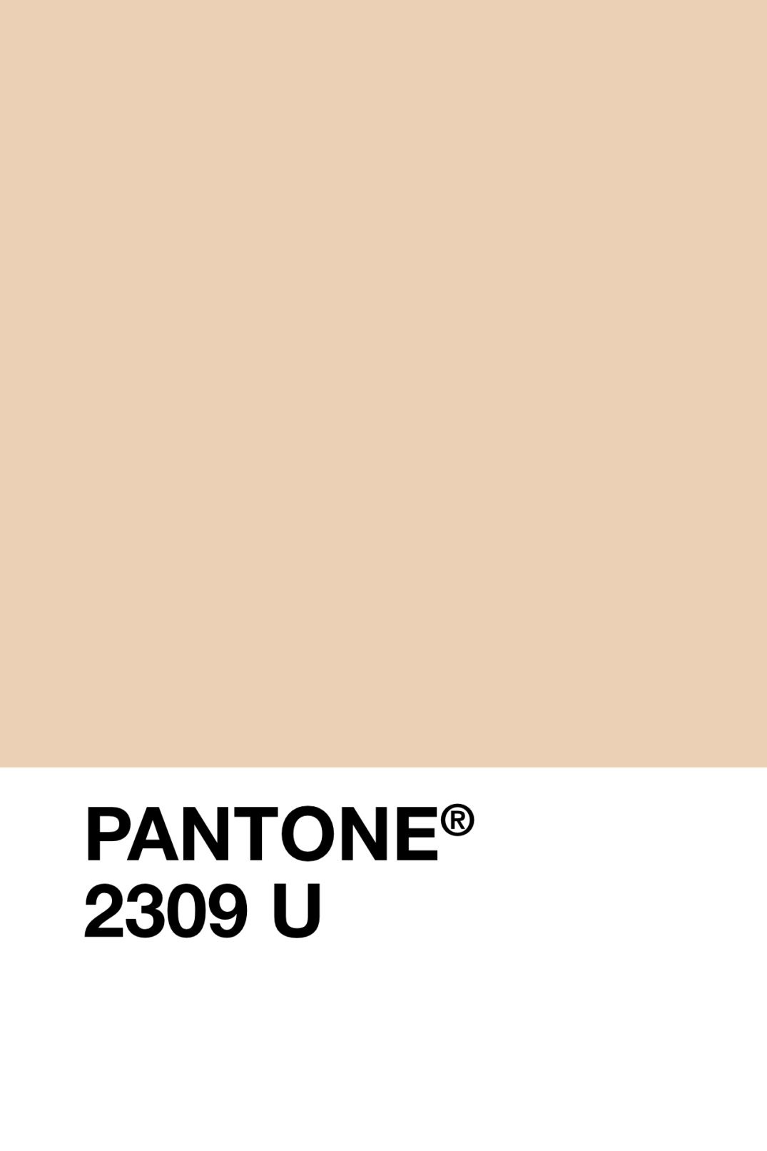 Finding The Perfect Beige