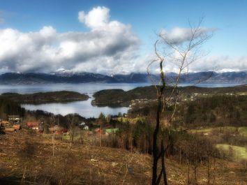 View from Myrdal.